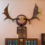 Mt Morris Moose Family Center